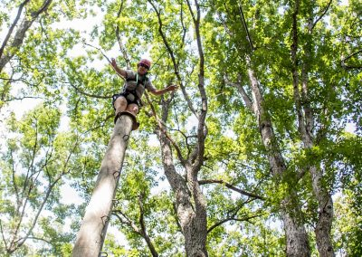 Aerial Course and High Ropes